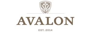 Catwalk Productions - Show - Avalon